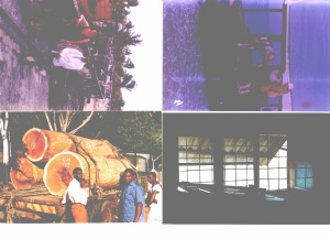 Africa 1997 b